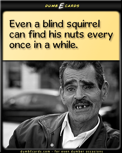 Squirrel Nuts - blind squirrel, balls, old sayingshappy birthday card, cards online, card online, thank you cards, get well cards,